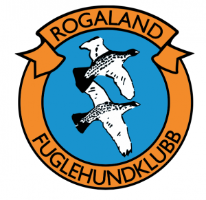 Logo RFK